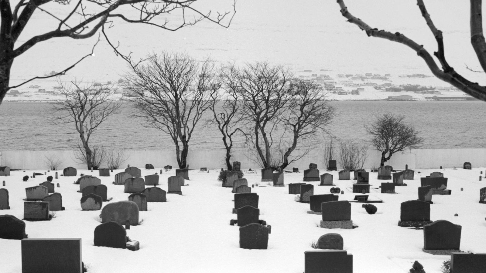 Un cementiri en una de les illes / Guillem Trius
