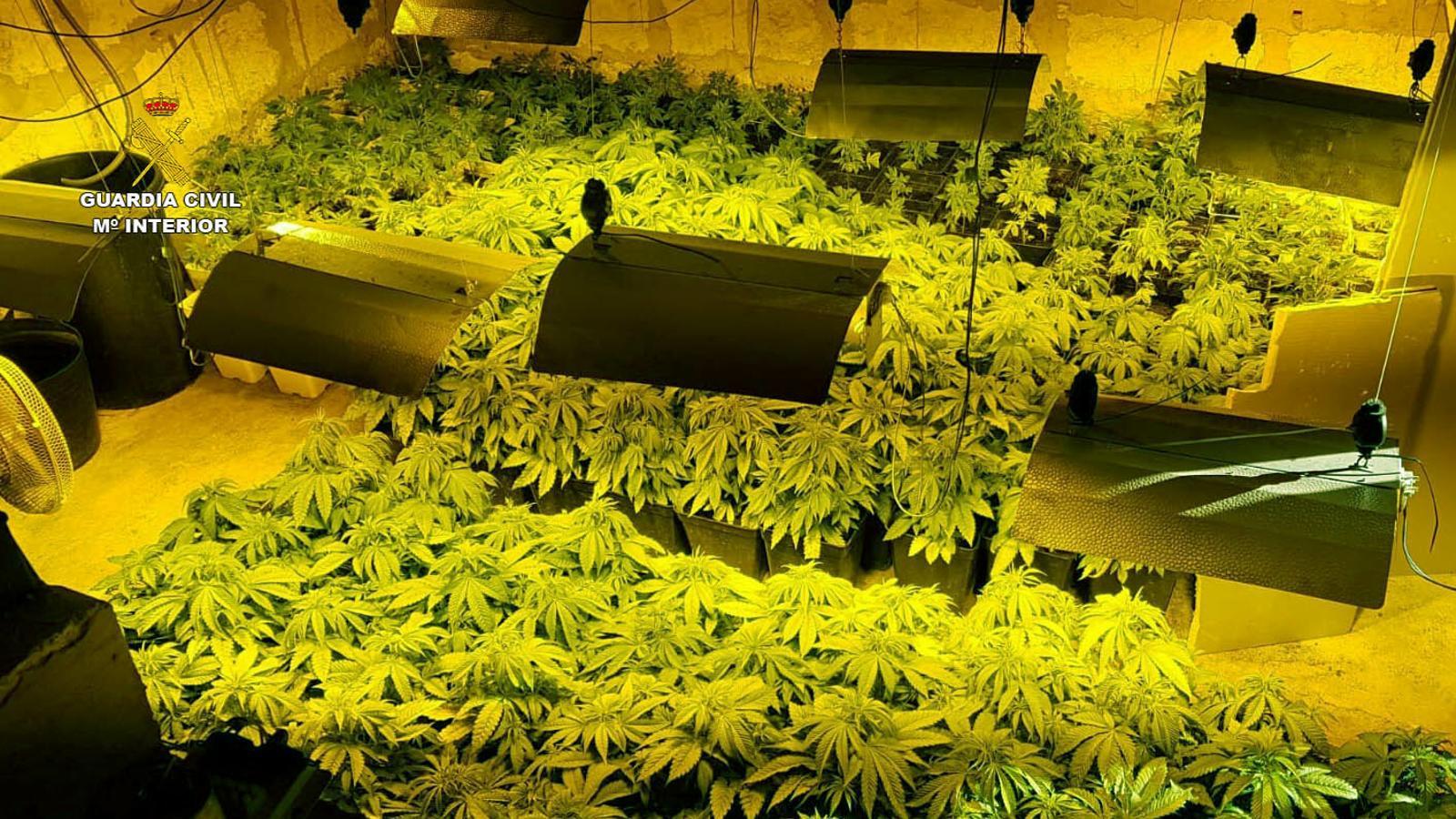 Els detinguts per tràfic de droga organitzaven viatges de pasteres a Mallorca des d'Algèria
