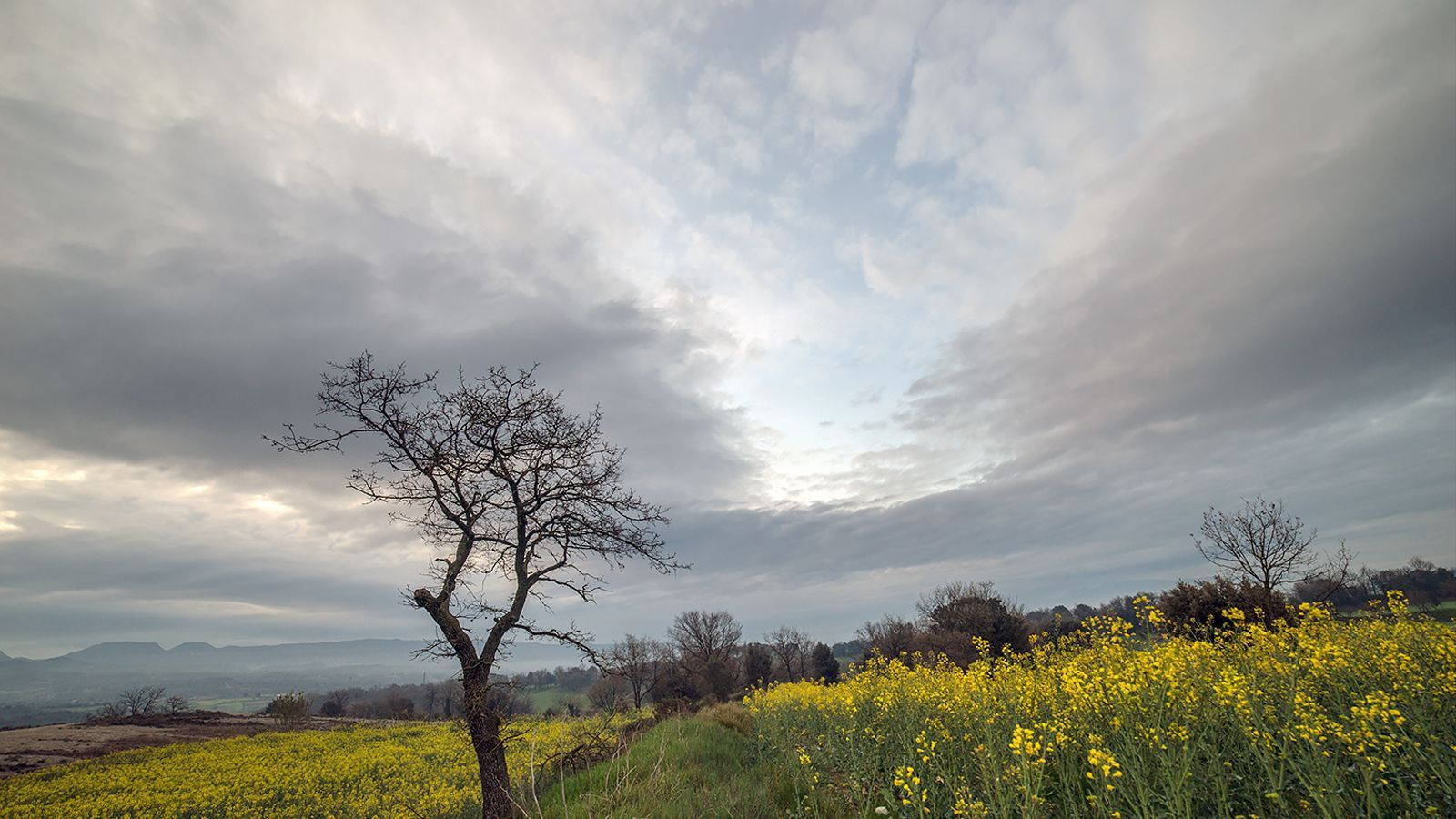 Demà tornarà l'ambient primaveral, però només per unes hores