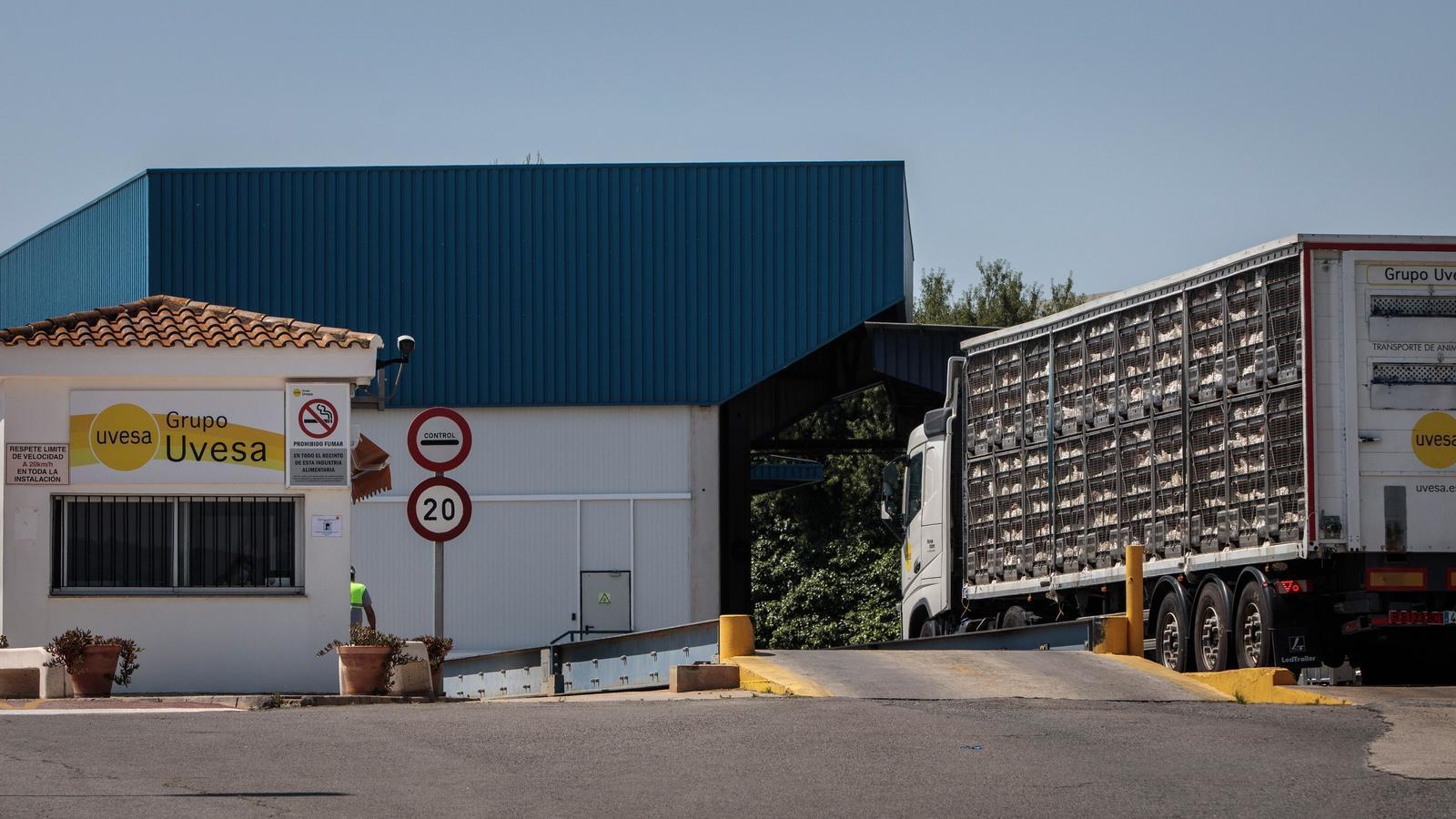 Sis contagis per coronavirus en una empresa càrnia del País Valencià