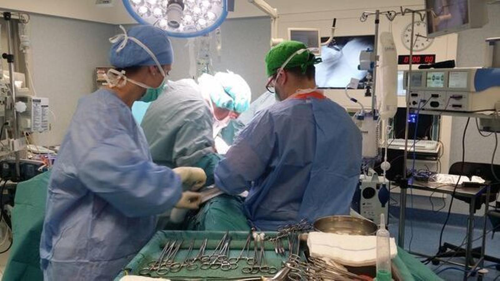 L'any 2019, en els hospitals públics de les Illes es varen extreure 198 òrgans per a trasplantaments.