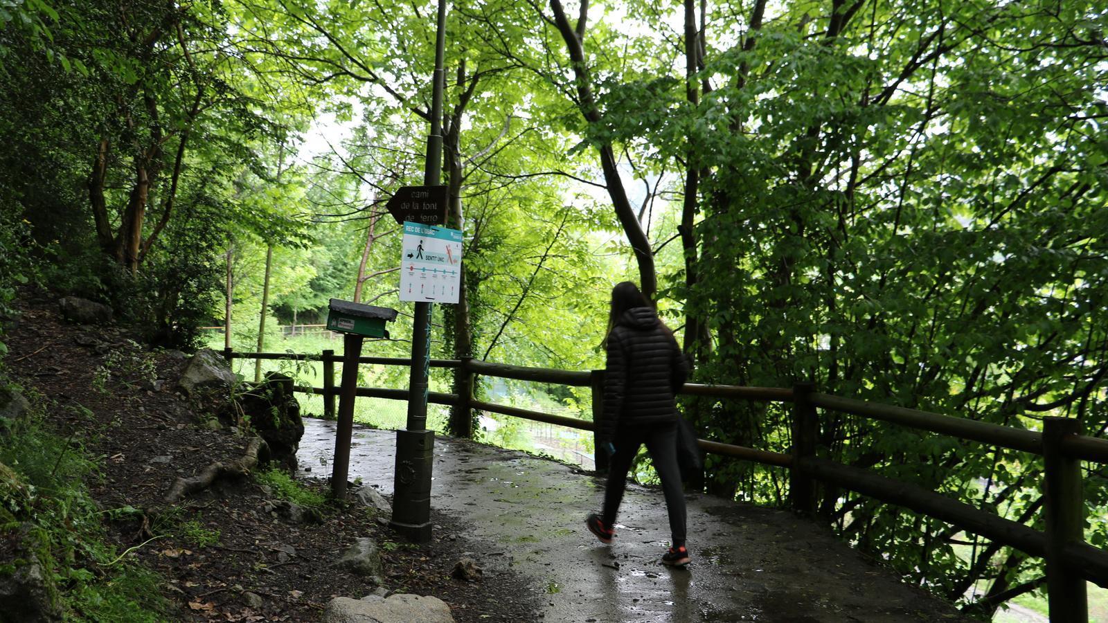 Una persona passeja el seu gos al rec de l'Obac. / E.C. (ANA)