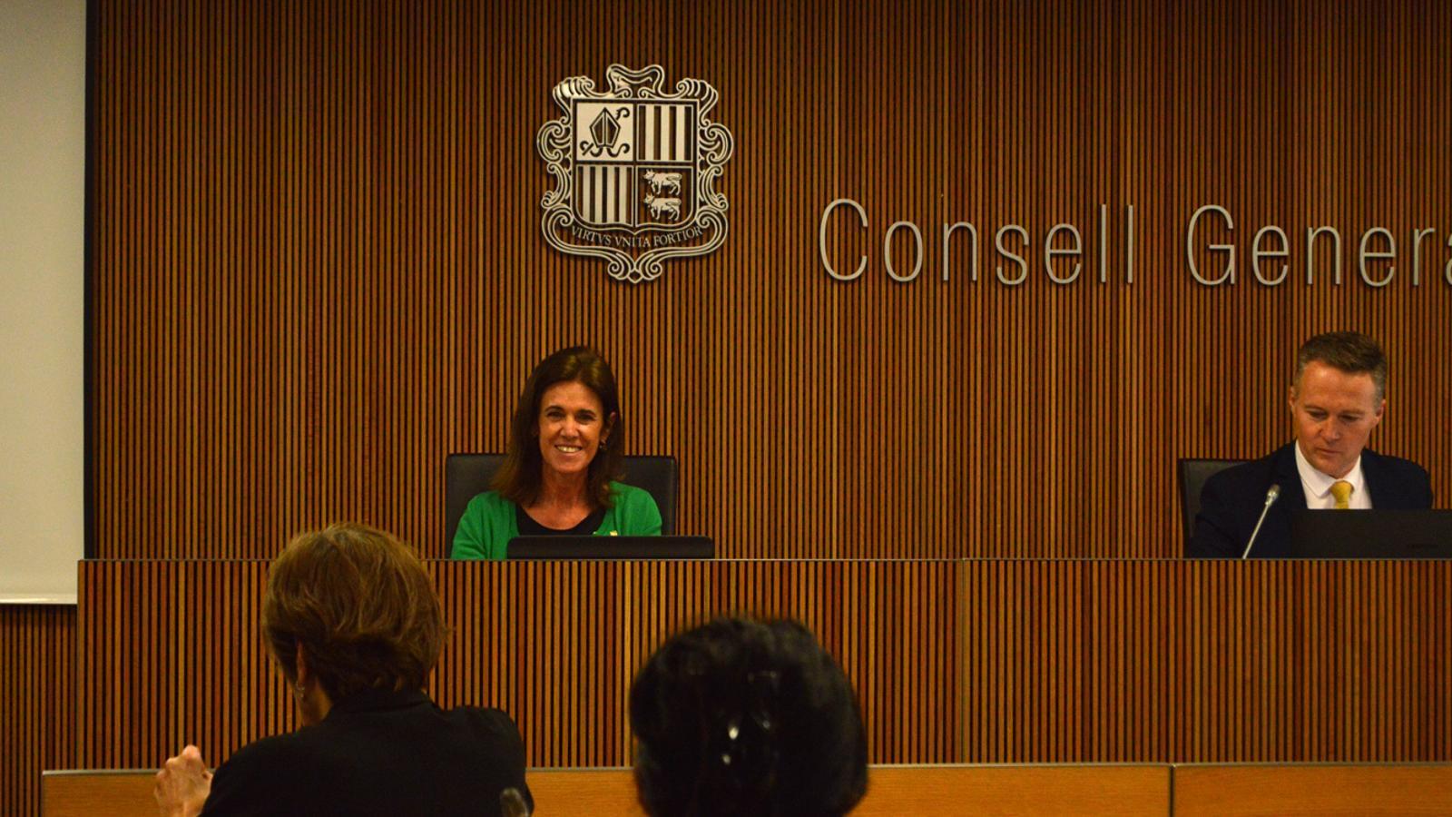 La ministra d'Educació i Ensenyament Superior, Ester Vilarrubla, durant la compareixença al davant de la comissió legislativa d'Educació, Recerca, Cultura, Joventut i Esports. / M. F. (ANA)