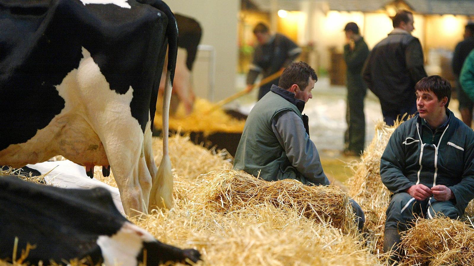 Els pagesos francesos ja poden marxar de vacances