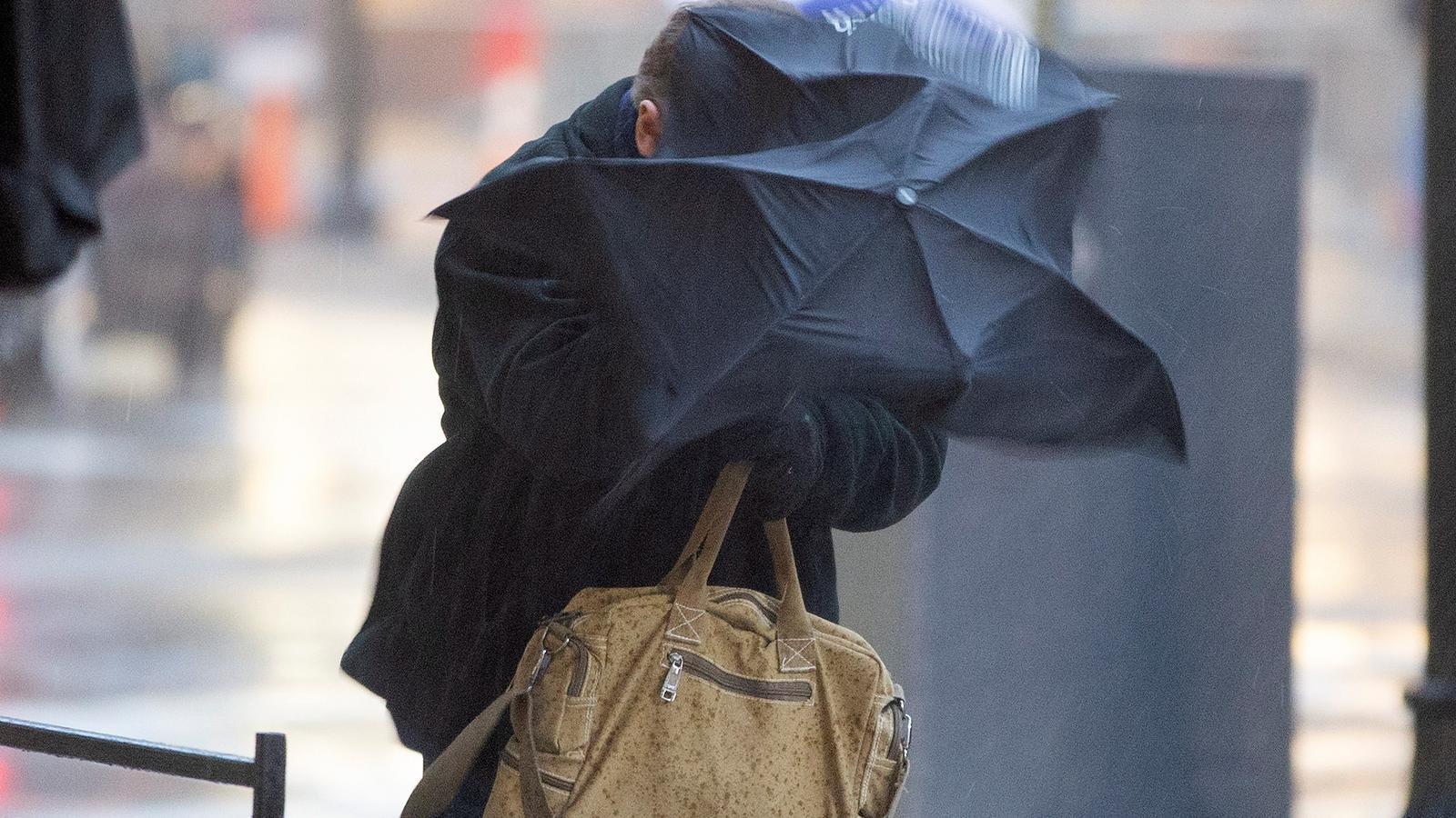 Emergències detecta més de 200 incidències a causa del vent a les Balears