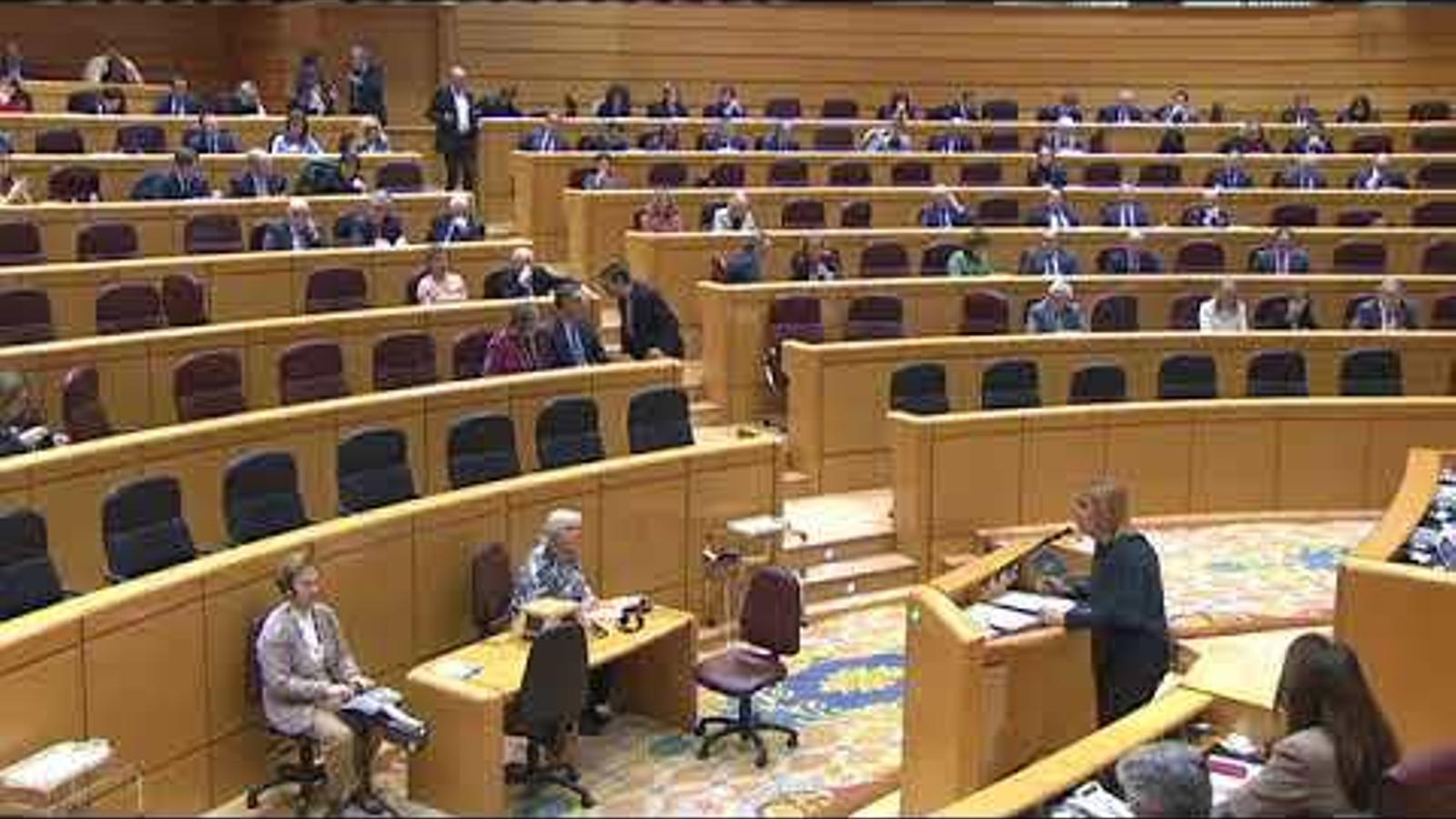 La intervenció sencera de Soler al ple de Senat.