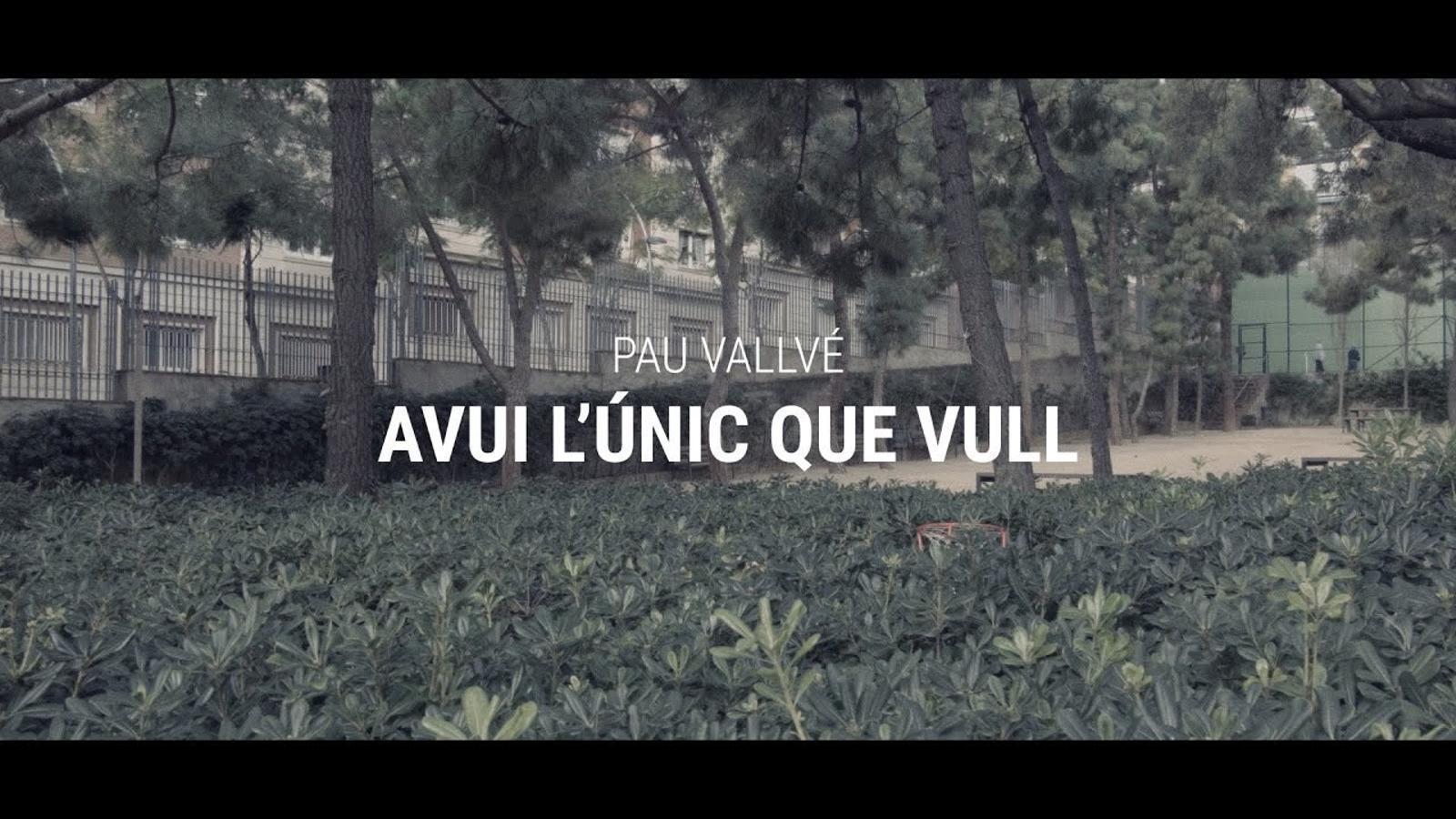 'Avui l'únic que vull', de Pau Vallvé