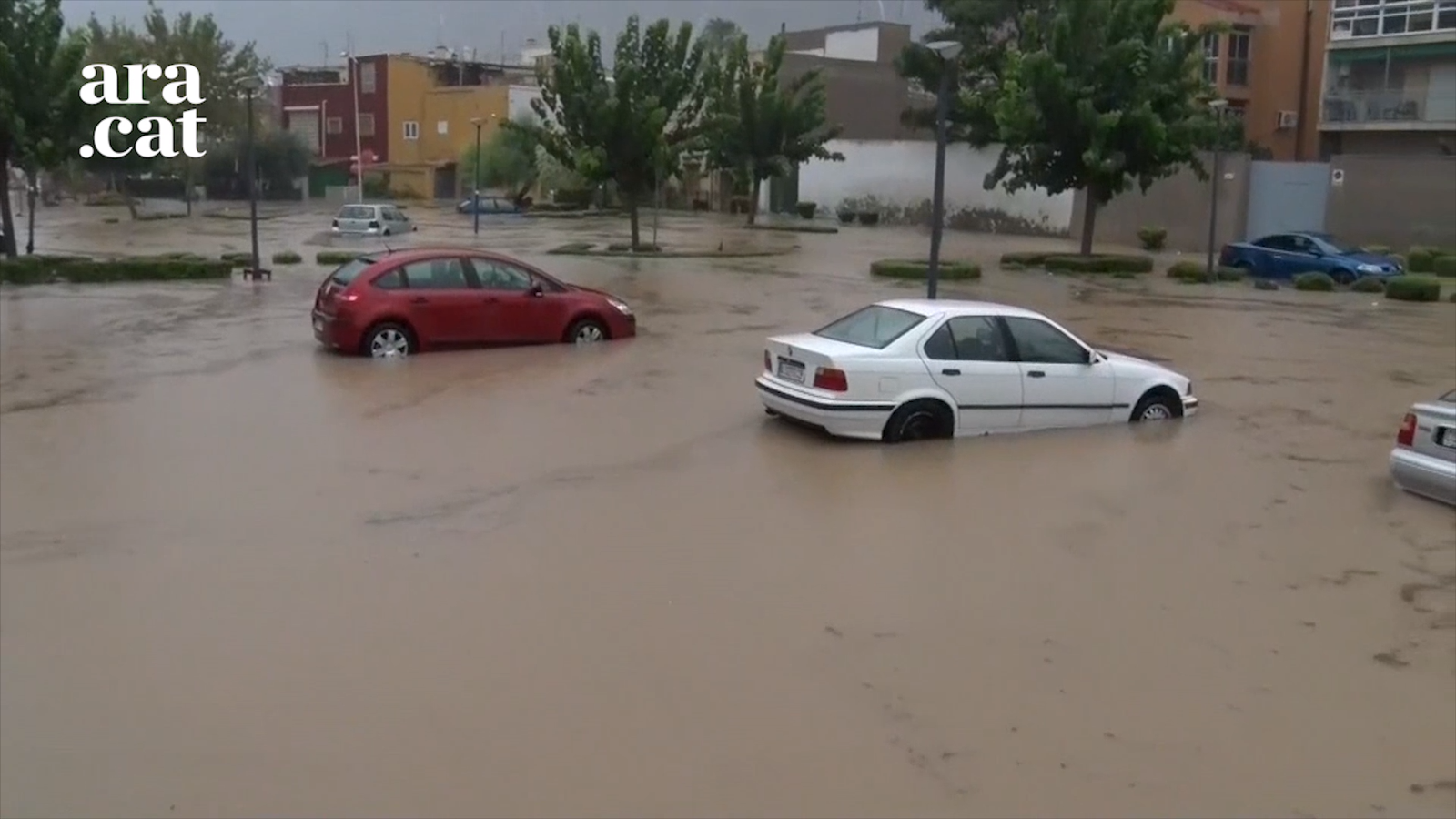 El riu Segura es desborda a Oriola
