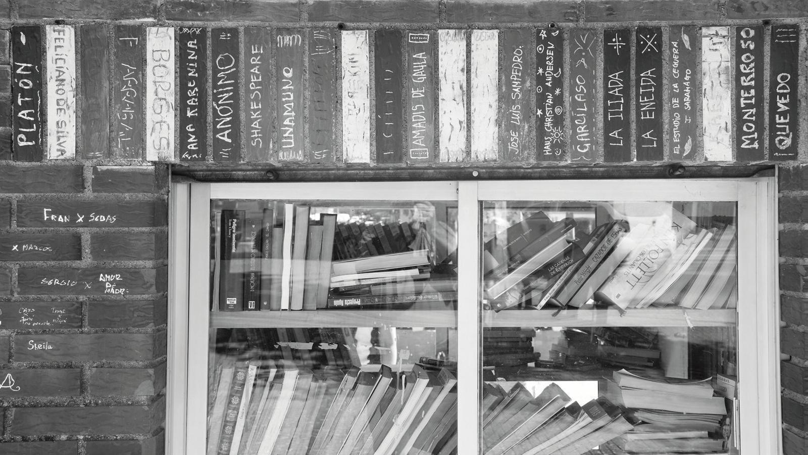Què llegeixen   Els filòsofs?