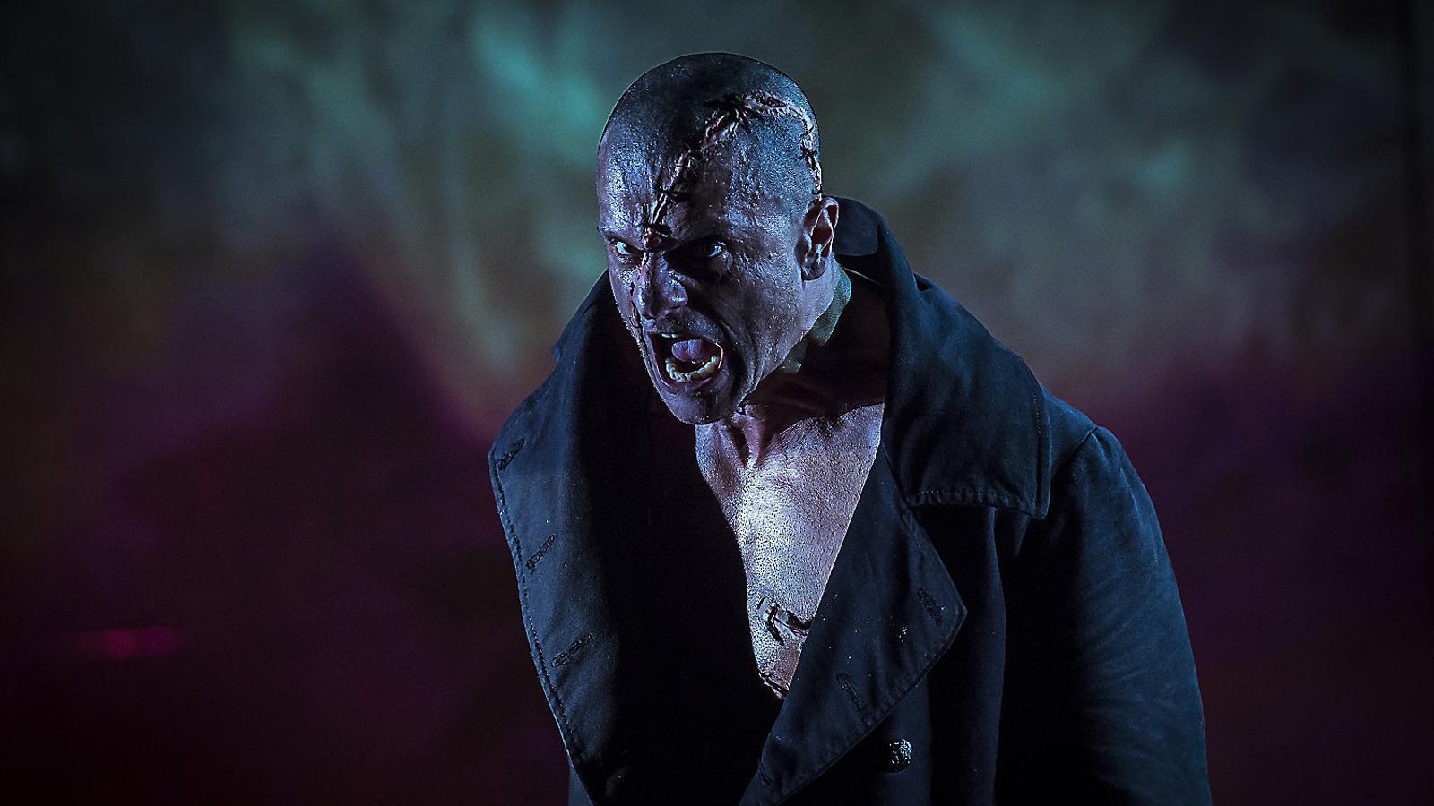 Frankenstein,  El monstre  Més humà