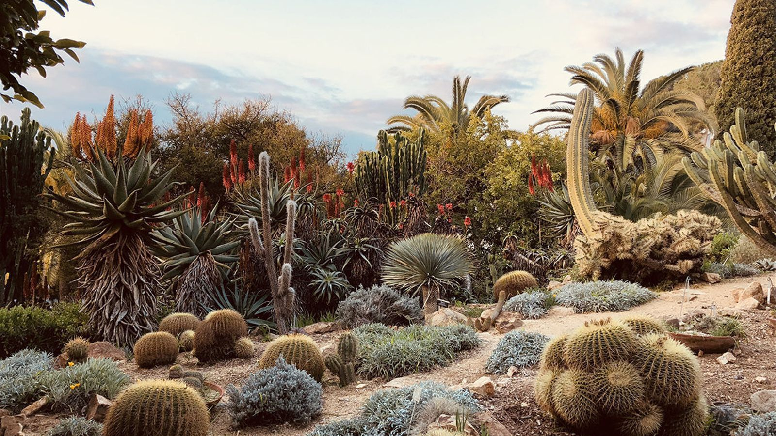 1. El bosc de bambú del Jardí Botànic Marimurtra.  2. Els Jardins de Santa Clotilde tenen unes vistes espectaculars al mar.  3. El Jardí Botànic Marimurtra ens transporta a escenaris mexicans.  4. Visitants als Jardins de Mossèn Costa i Llobera.
