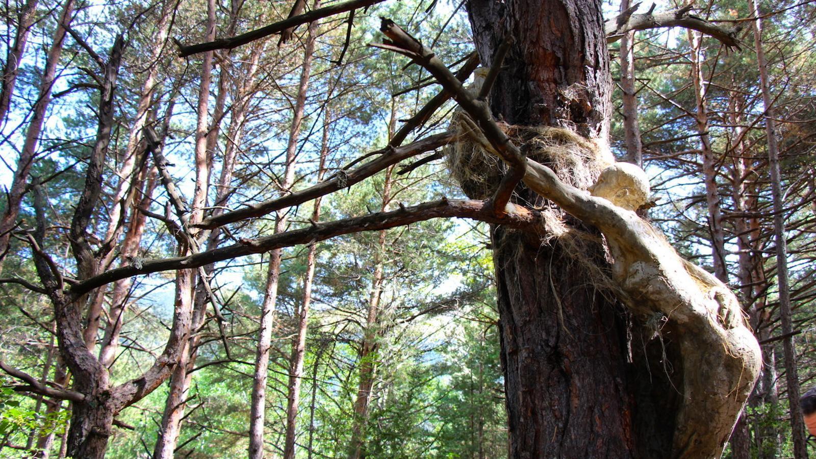 Una de les escultures del projecte artístic 'Arrels', de l'escultor Àngel Calvente, al bosc de l'Esquella d'Ordino.  / C. G. (ANA)