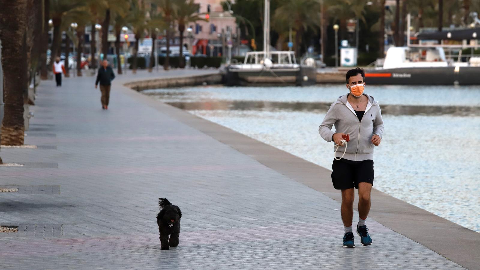 Es pot sortir a passejar la mascota mantenint les distàncies i mesures de protecció i seguretat