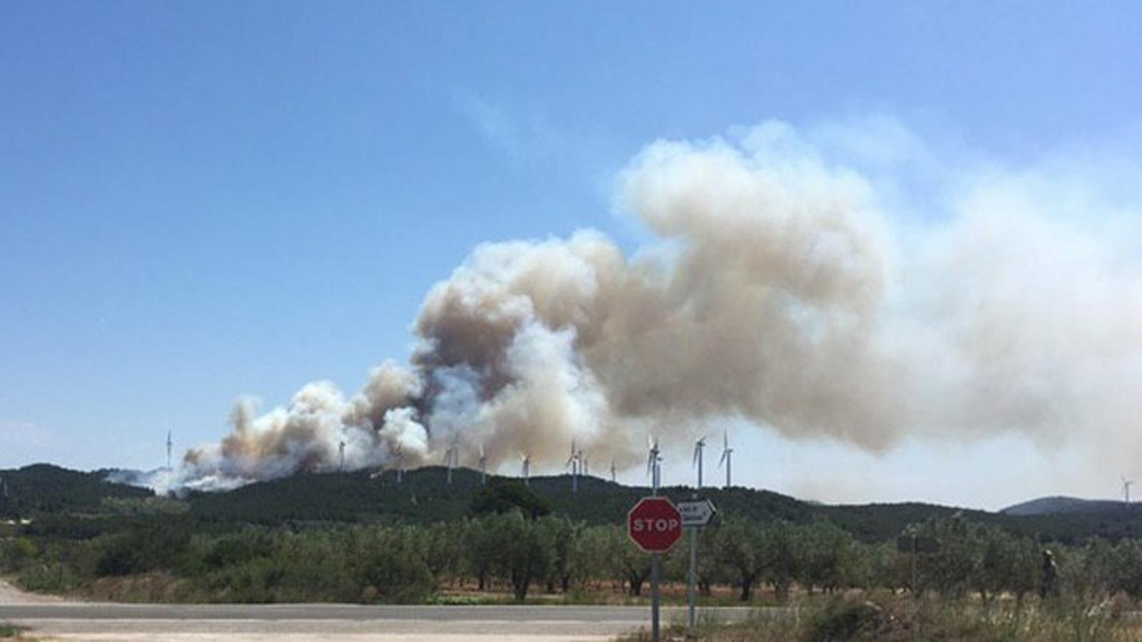 Una trentena de dotacions dels bombers intenten controlar un incendi forestal a la Collada del Perelló