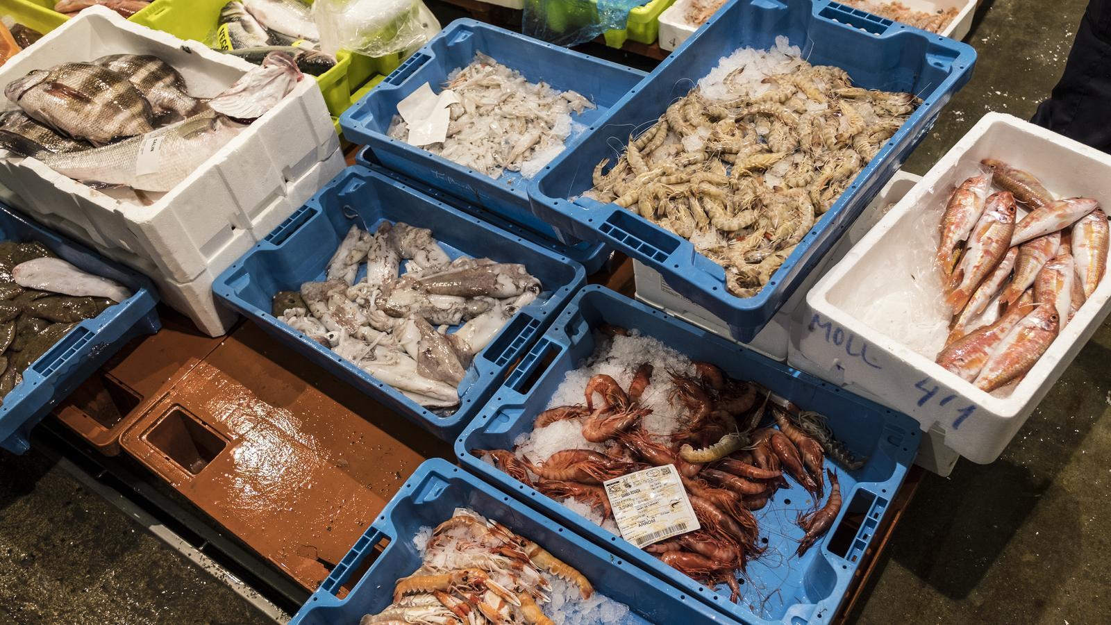 Barcelona acollirà la principal fira mundial de productes del mar