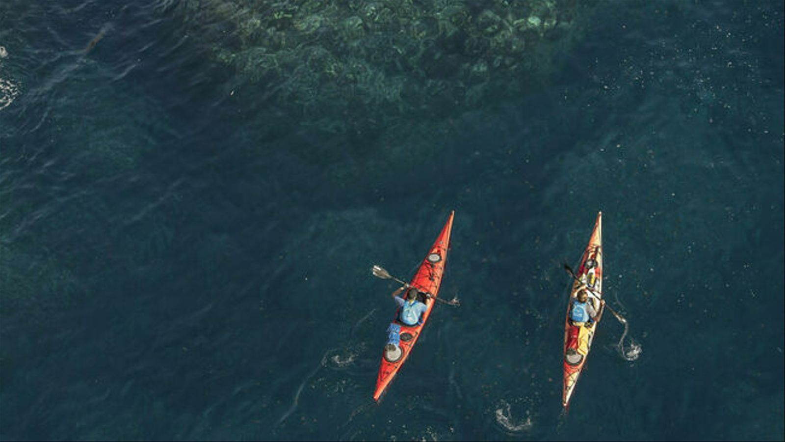 Les empreses nàutiques de l'illa demanden ajudes institucionals per afrontar el futur.