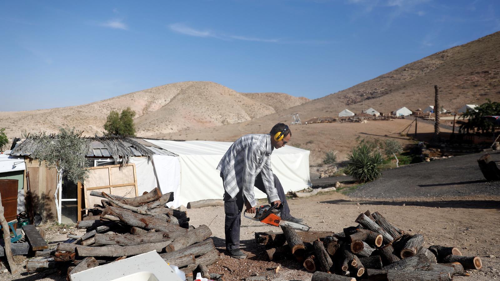 David Davidson, propietari del ressort Khan Eretz Ha'Mirdafim, a la Cisjordània ocupada, serra troncs per fer llenya