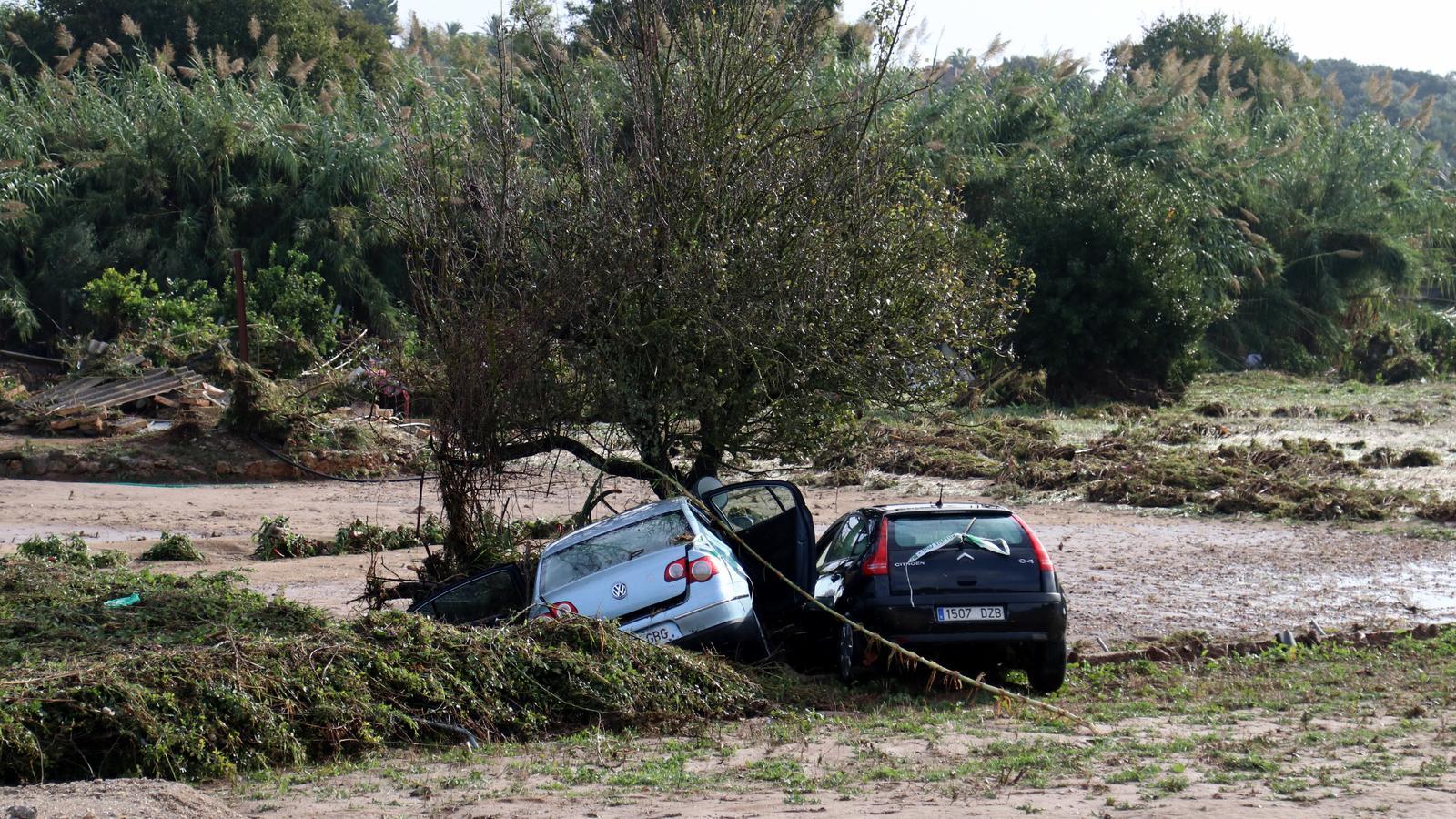 Les explotacions afectades del Llevant podran rebre una compensació de fins al 80% pels danys soferts