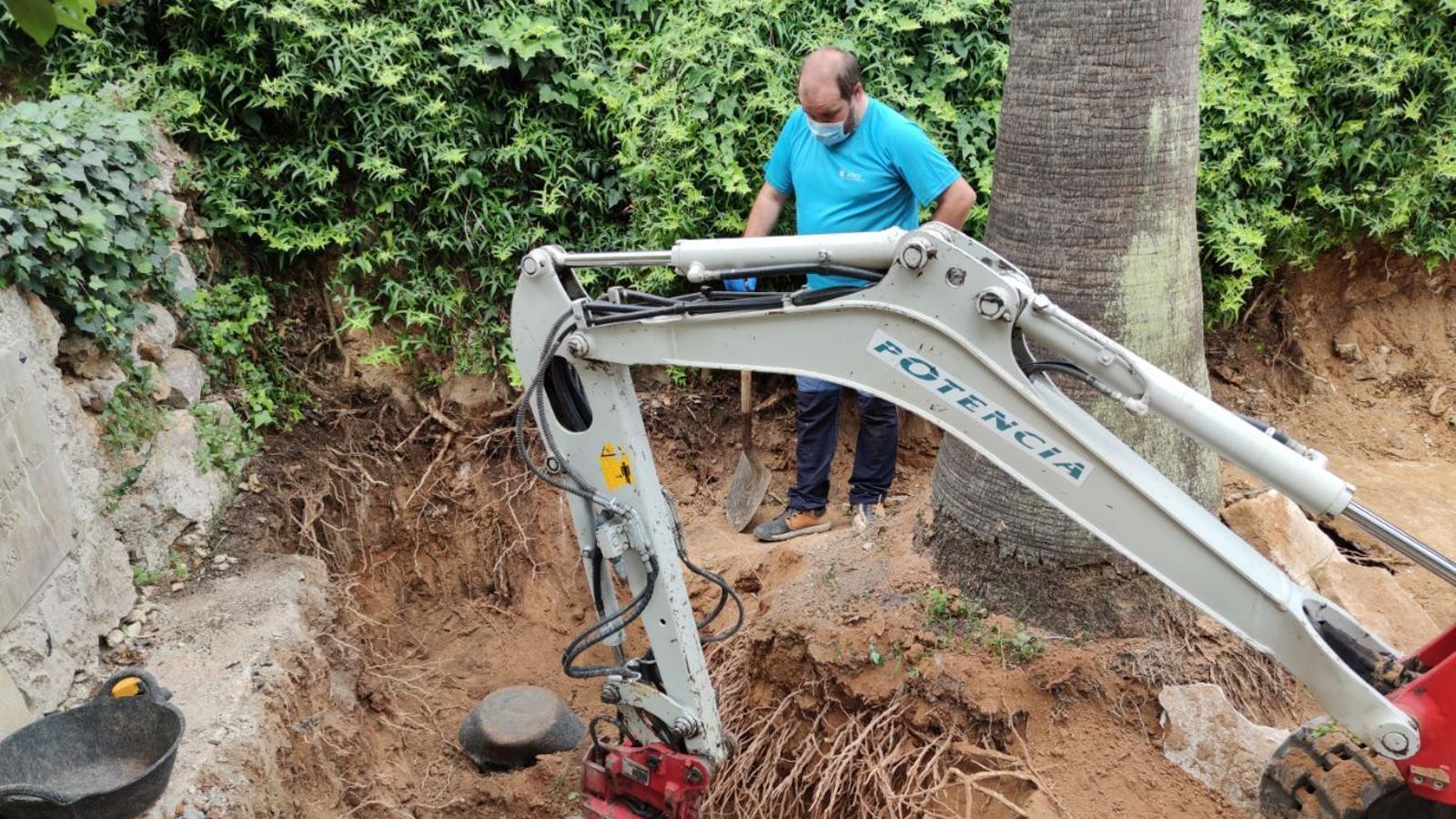 Les tasques de la segona fase d'exhumació de la fossa de Sencelles han començat a les 8.30 h