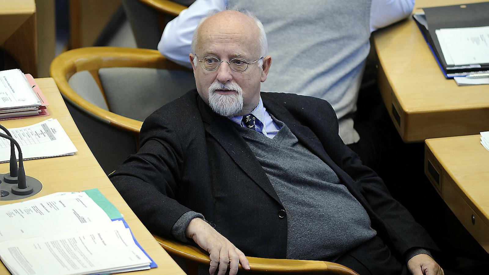 Von Grünberg i Catt: qui són els primers 'observadors' internacionals en declarar al Suprem?