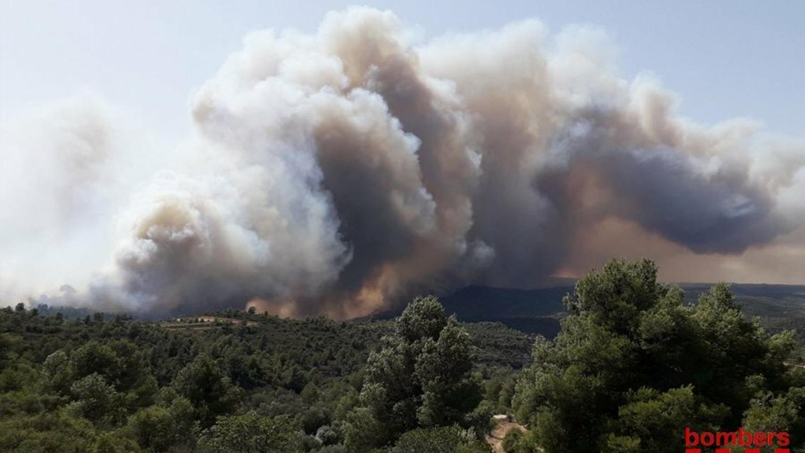 Un incendi forestal a la Torre de l'Espanyol obliga a tallar dues carreteres