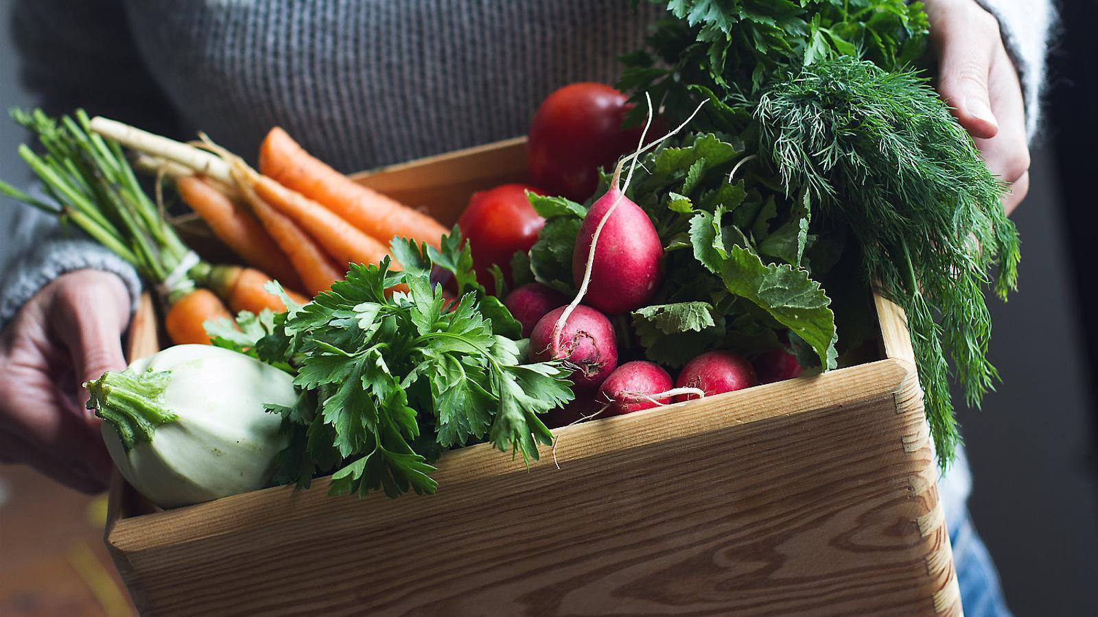 Per què és tan cara l'alimentació saludable i tan econòmica la que no ho és? Mas Salagros, l'únic hotel i restaurant 100% ecològic Principis de la tria alimentària