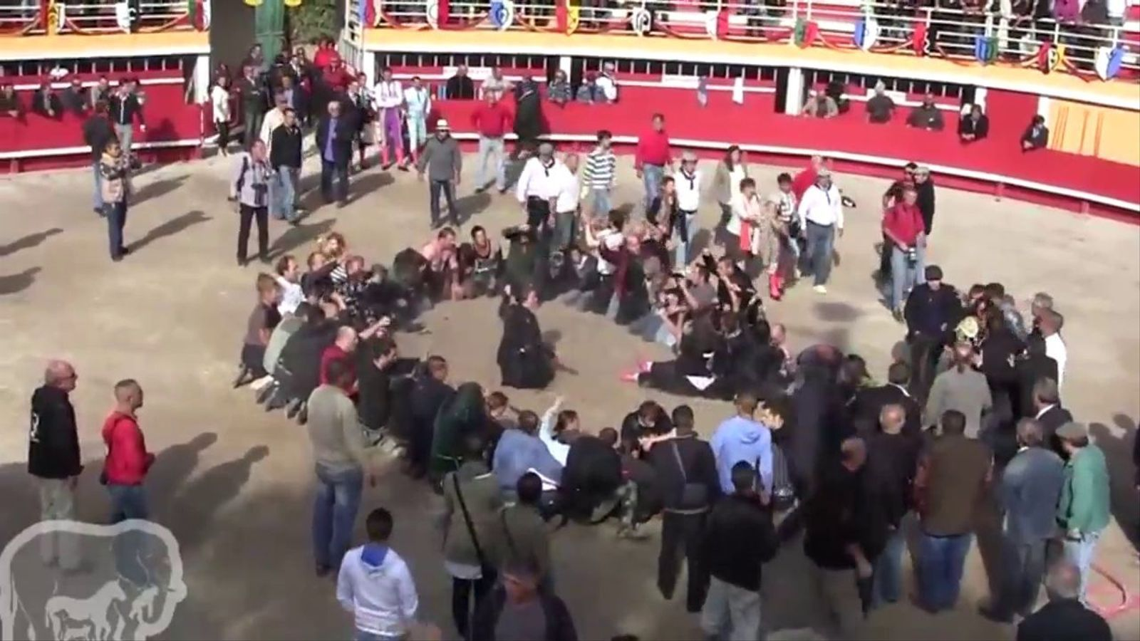 Aigua i empentes per evitar una protesta contra les corrides de toros a França
