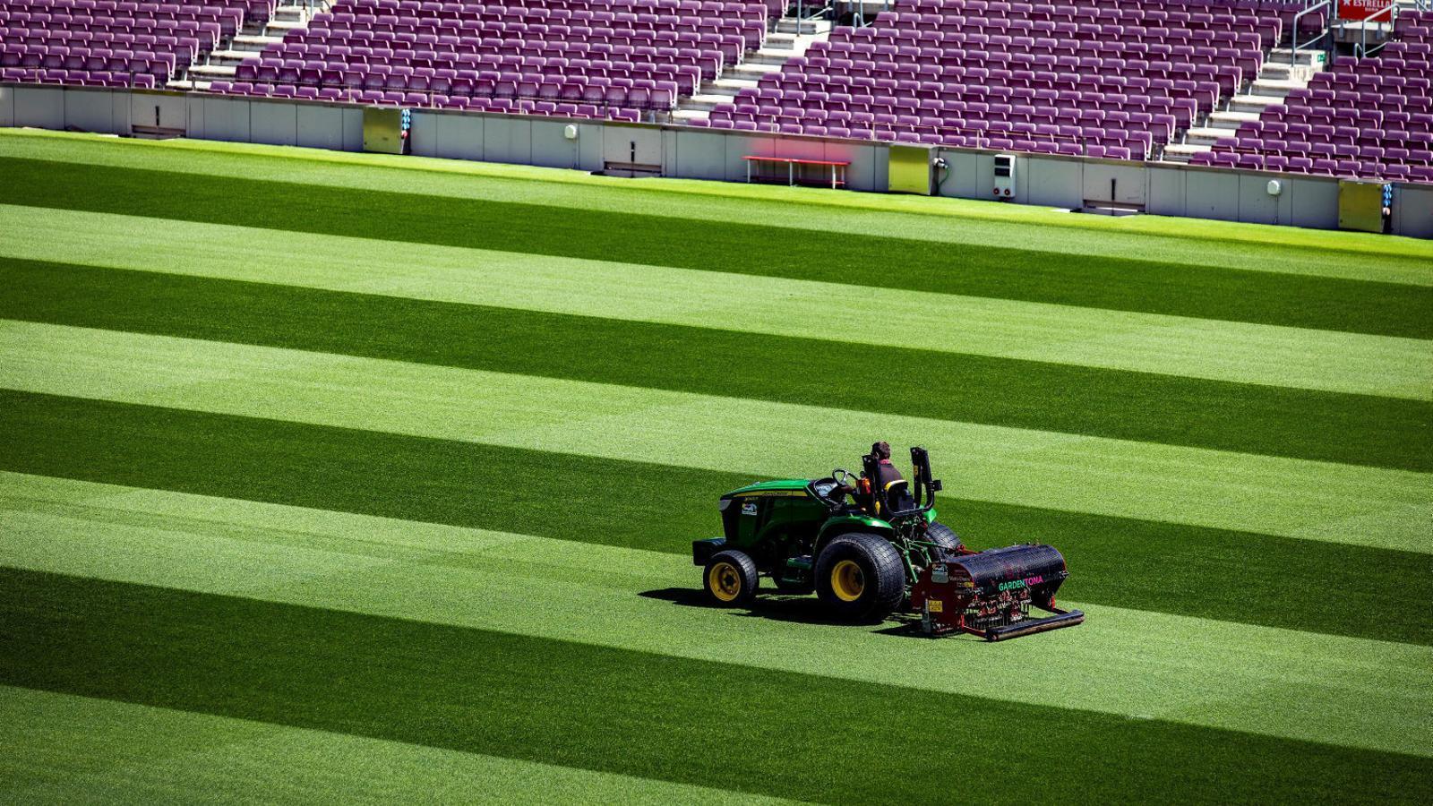 Cuidadors supervisant la gespa del Camp Nou, on fa temps que no es juga cap partit.