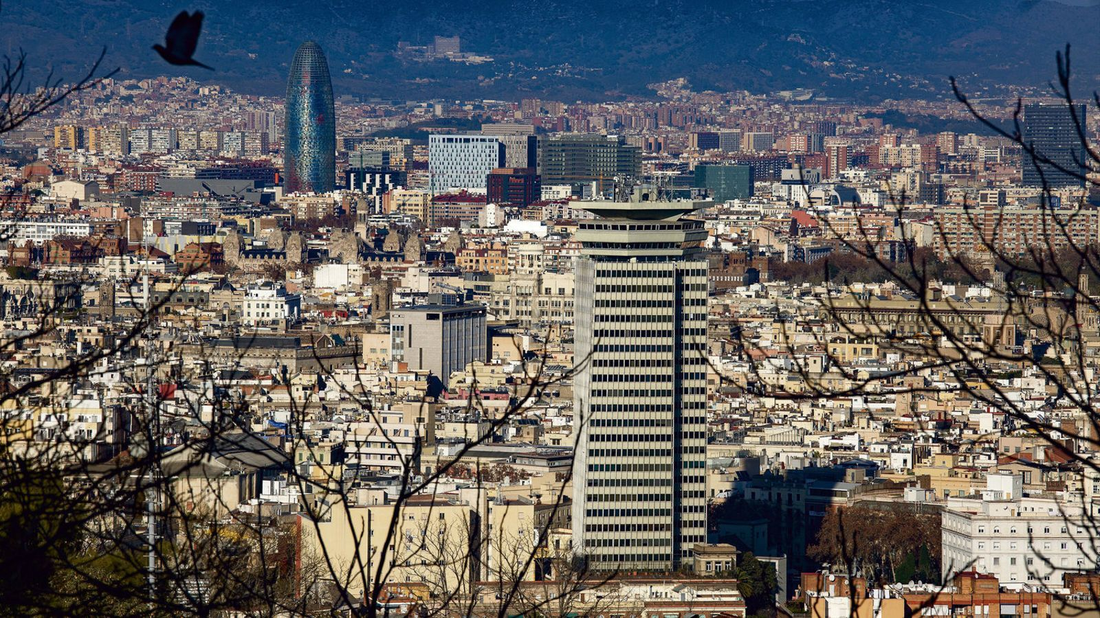 Les multinacionals disparen el lloguer d'oficines a Barcelona