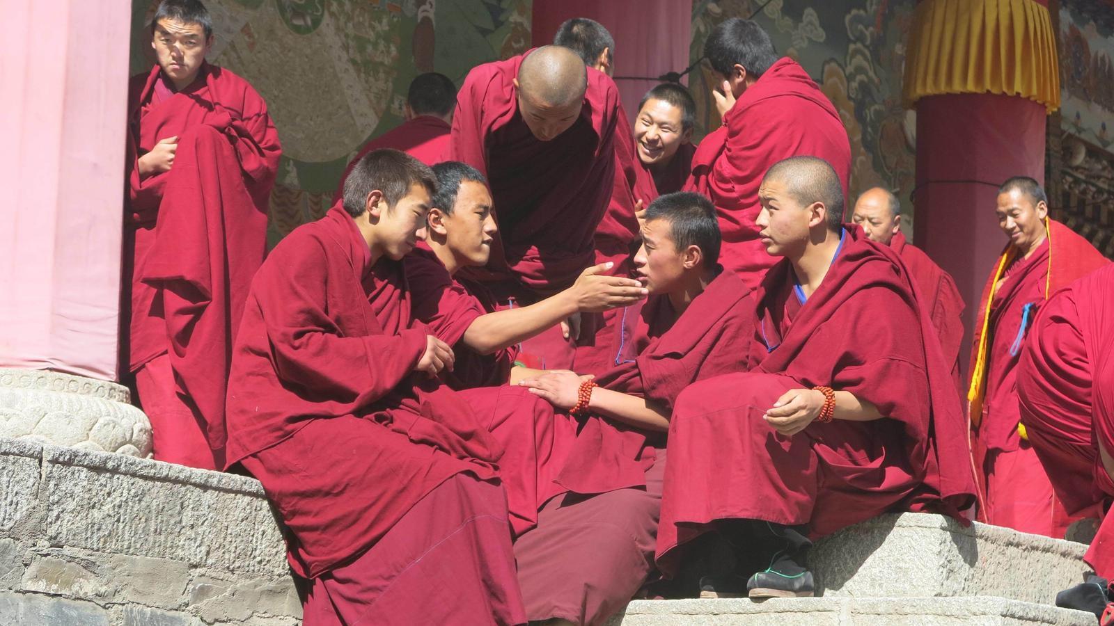 Monjos debatent a la porta del temple principal del monestir de Labrang. / Xavier Moret