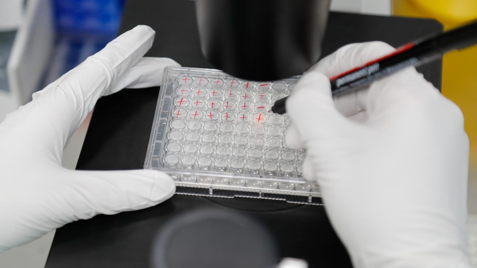 Treballs d'investigació en un laboratori rus que desenvolupa la seva pròpia vacuna contra el covid-19
