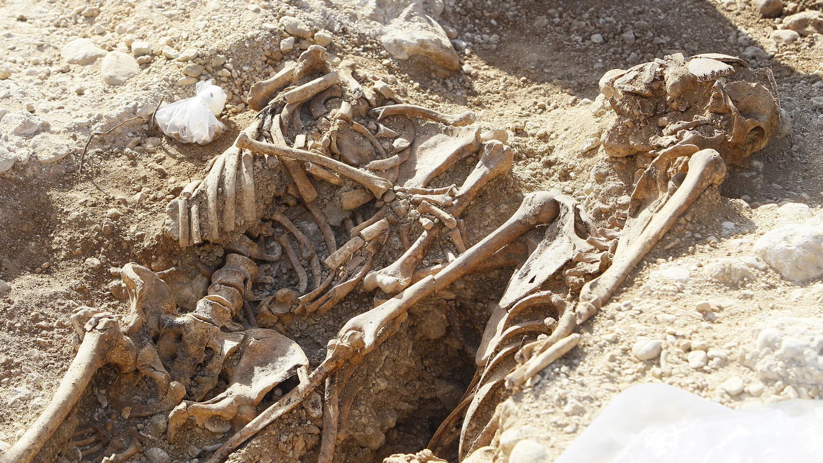 ELs arqueòlegs esperaven trobar restes entre dilluns i aquest dimarts.