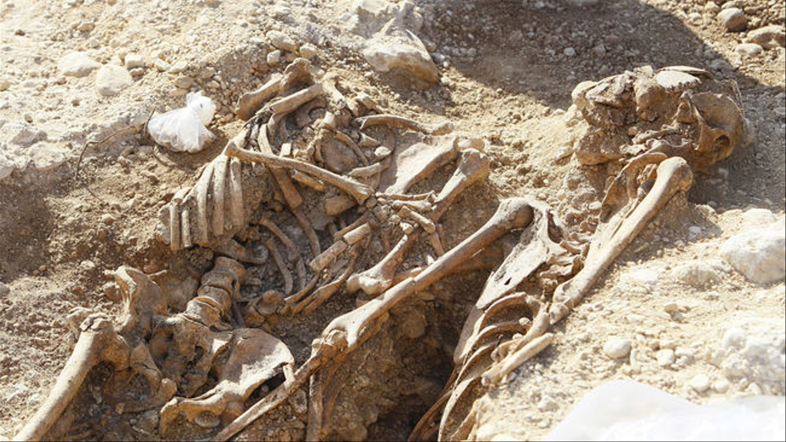 A la fossa de Marratxí han aparegut un total de cinc cossos.