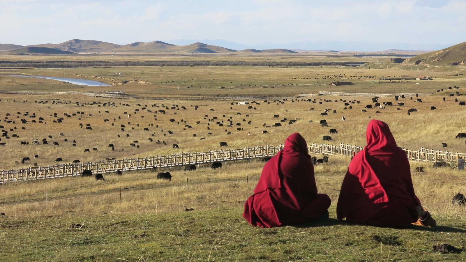 Dos monjos meditant al primer revolt del riu Groc, amb una manada de iacs al fons / Xavier Moret