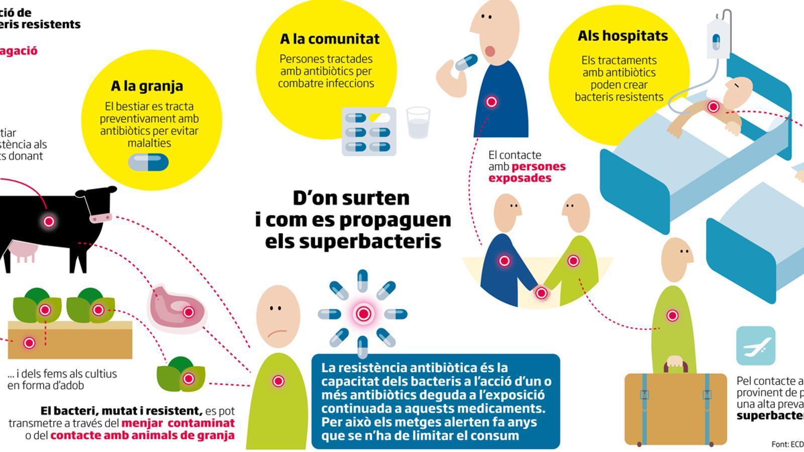 Hospitals catalans detecten un augment dels bacteris resistents