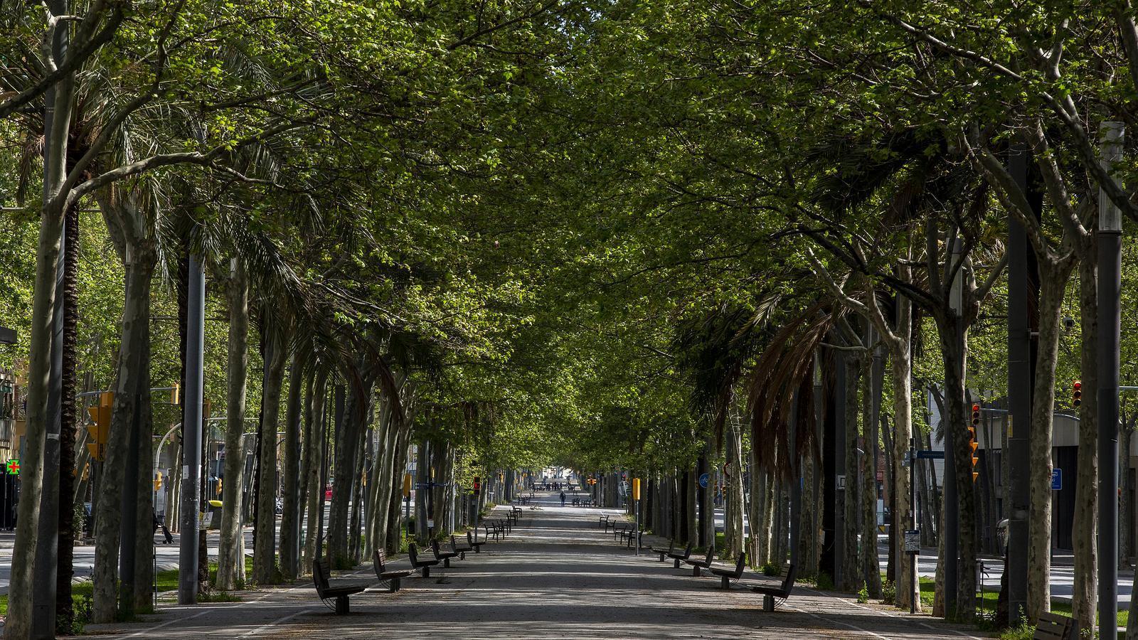 La diagonal de Barcelona buida