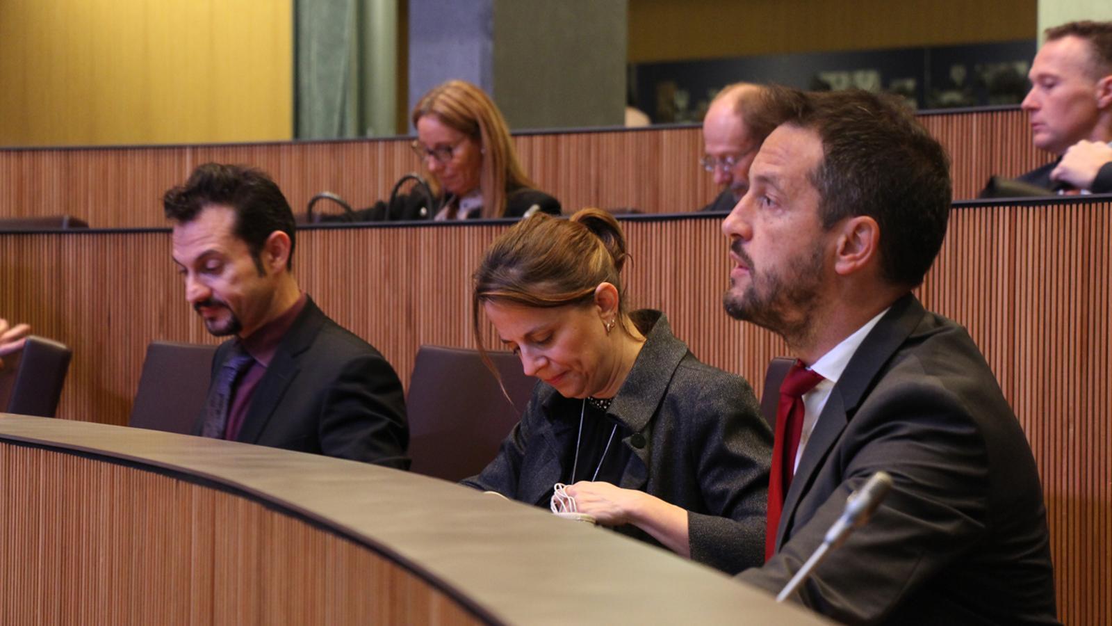 El consellers generals del PS encapçalats per Pere López durant la sessió de control al Govern d'aquest dijous. / M. M. (ANA)