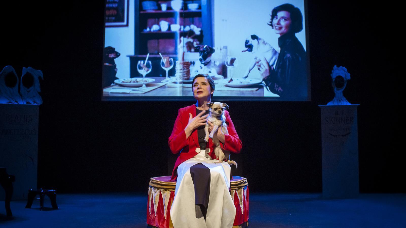 Isabella Rossellini, el mite es fa carn conferenciant sobre els animals