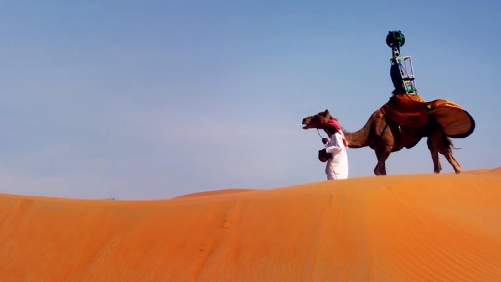 Google filma el desert amb una càmera a la gepa d'un camell