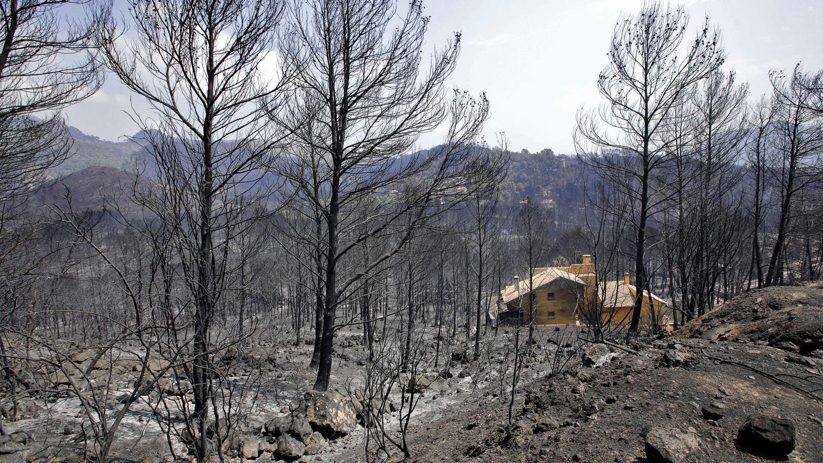 L'incendi forestal de Llutxent ha arrasat més de 3.000 hectàrees