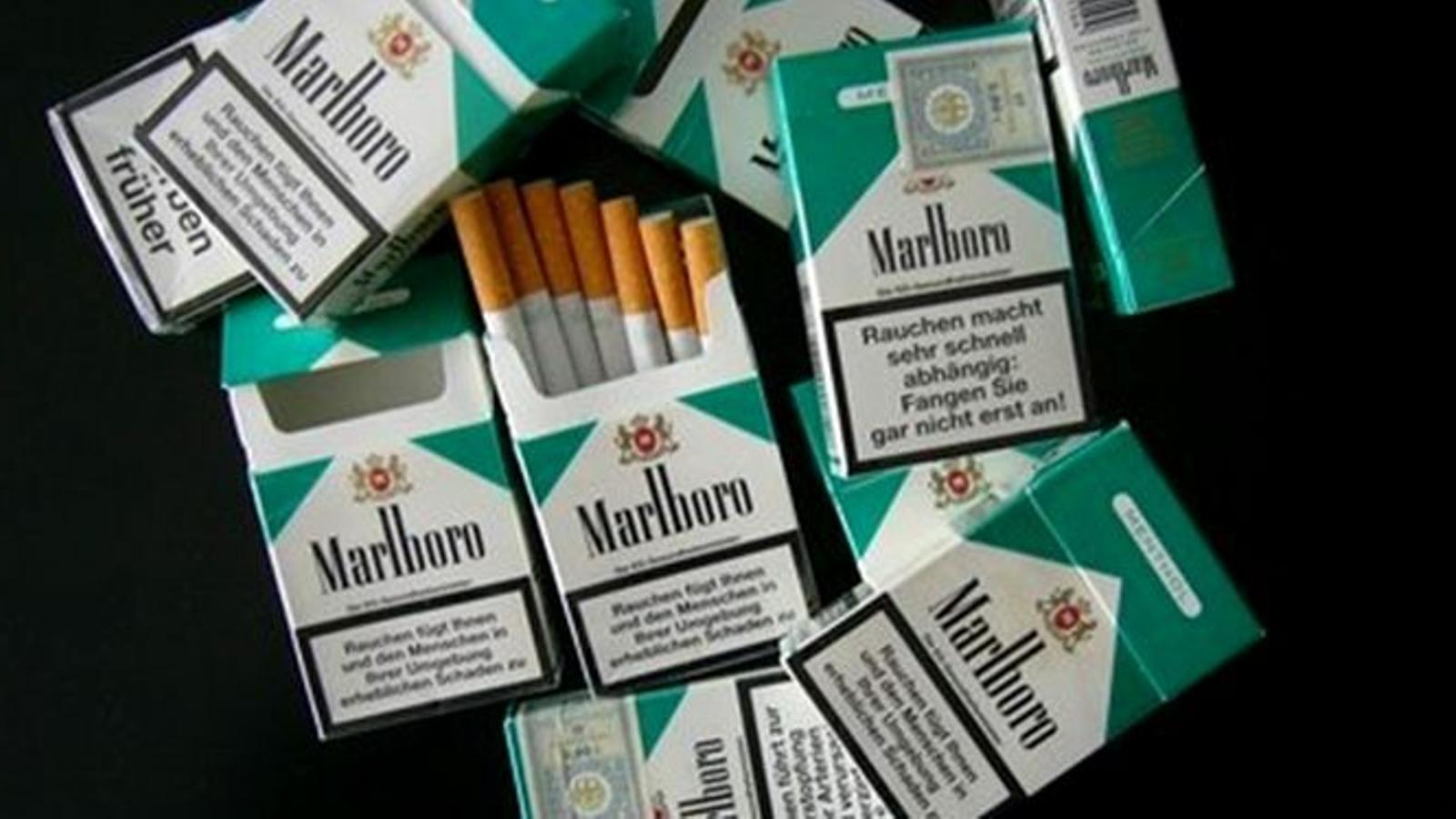 Tabac mentolat. / WIKIPEDIA