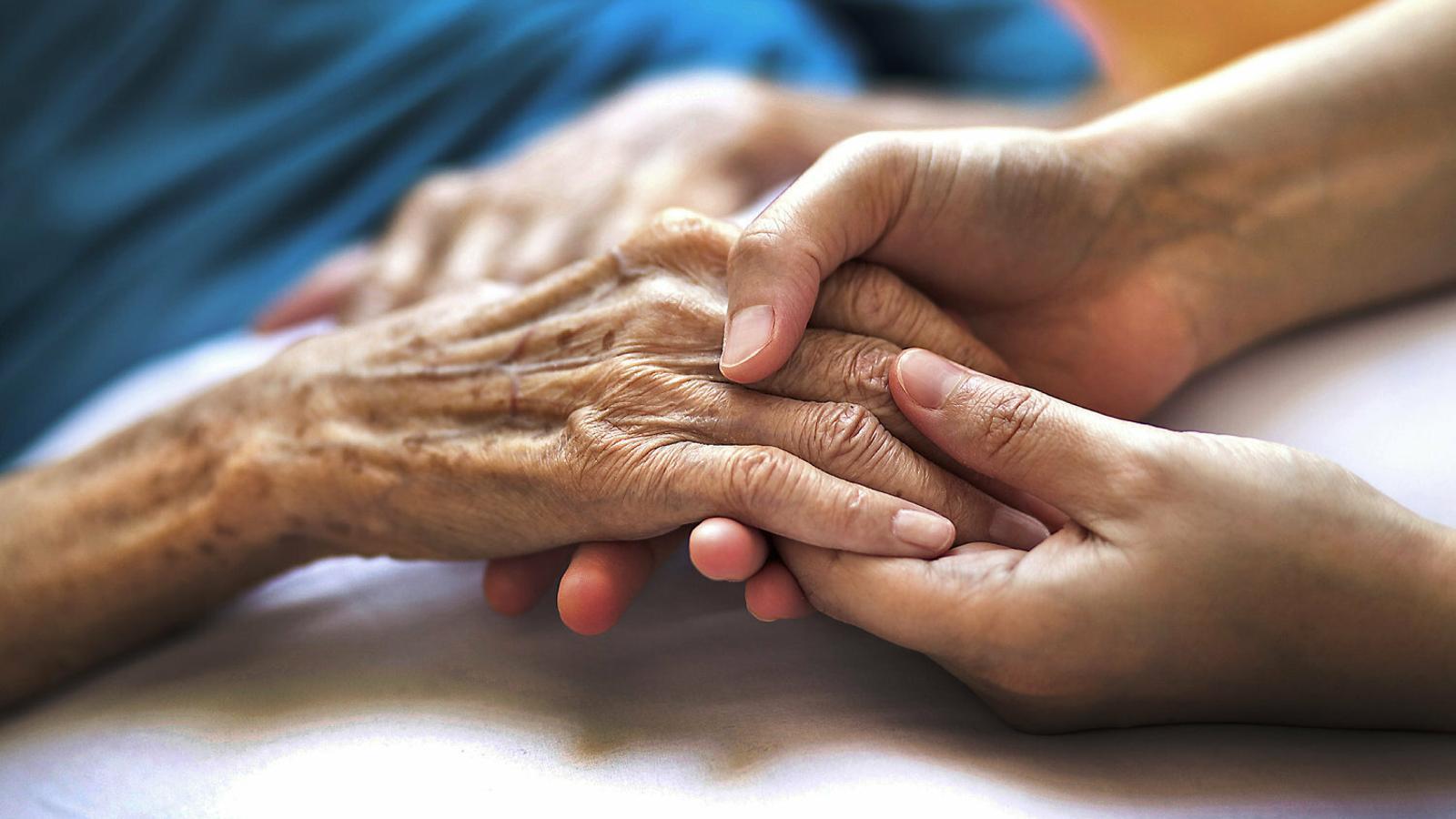 El plasma, el futur del diagnòstic precoç de l'Alzheimer.