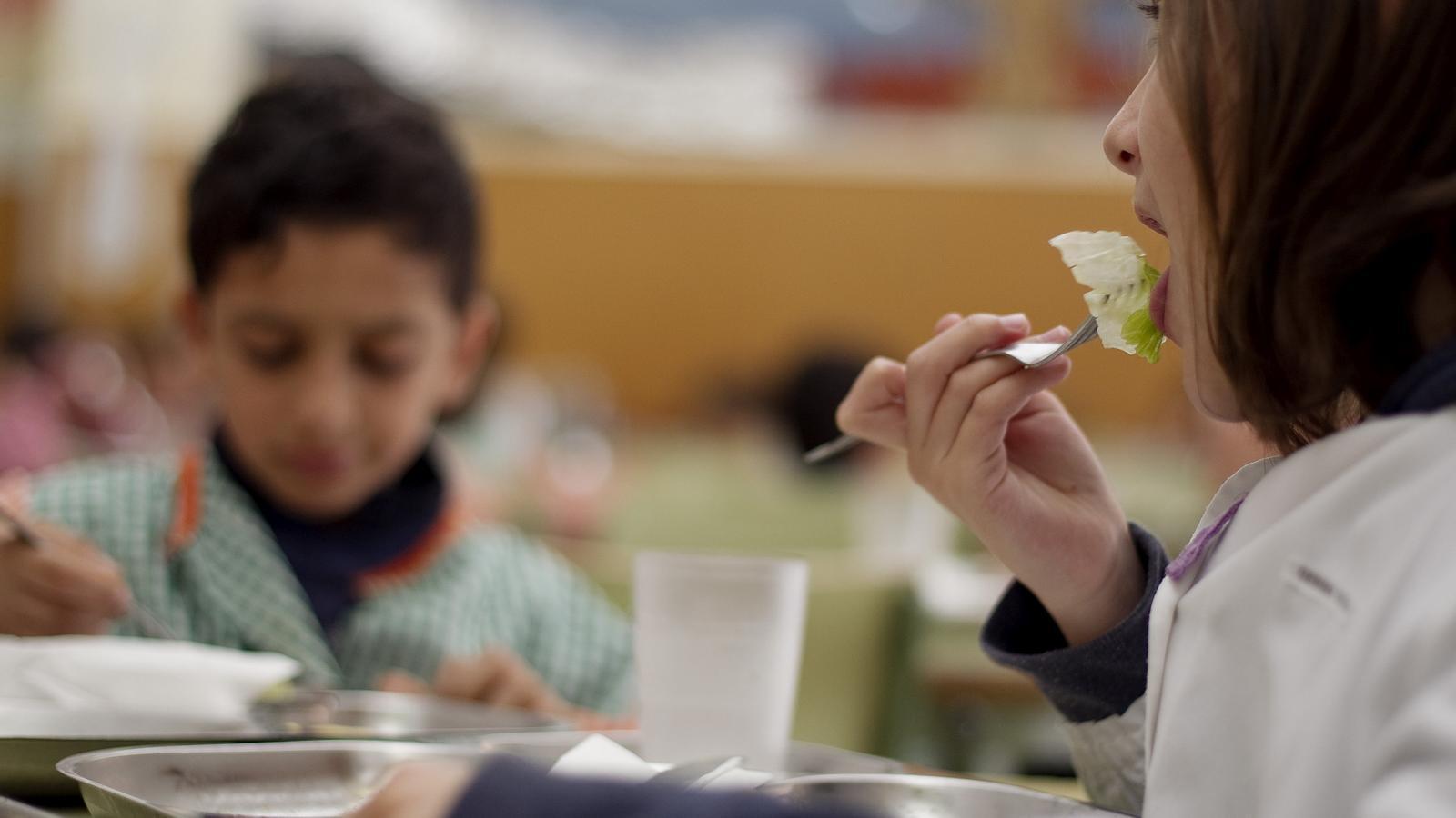 DINAR A L'ESCOLA  Els menjadors escolars han perdut un 20% d'alumnes. Cada cop més pares opten per la carmanyola per estalviar-se aquesta despesa.
