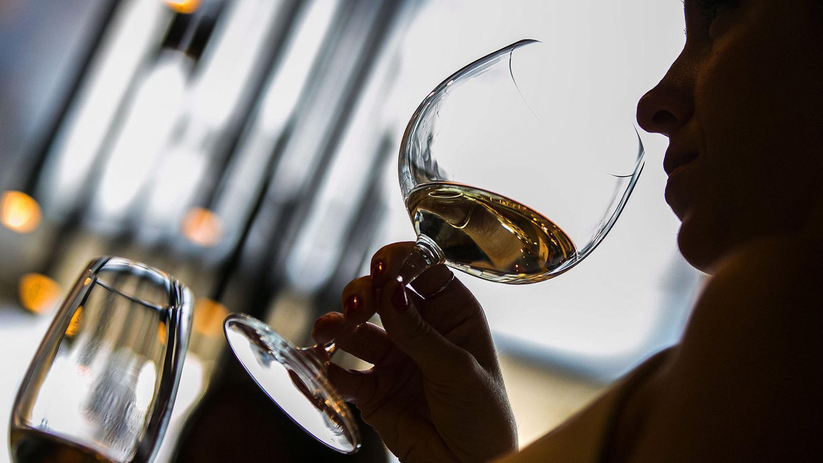 Beure vi, una experiència per als cinc sentits
