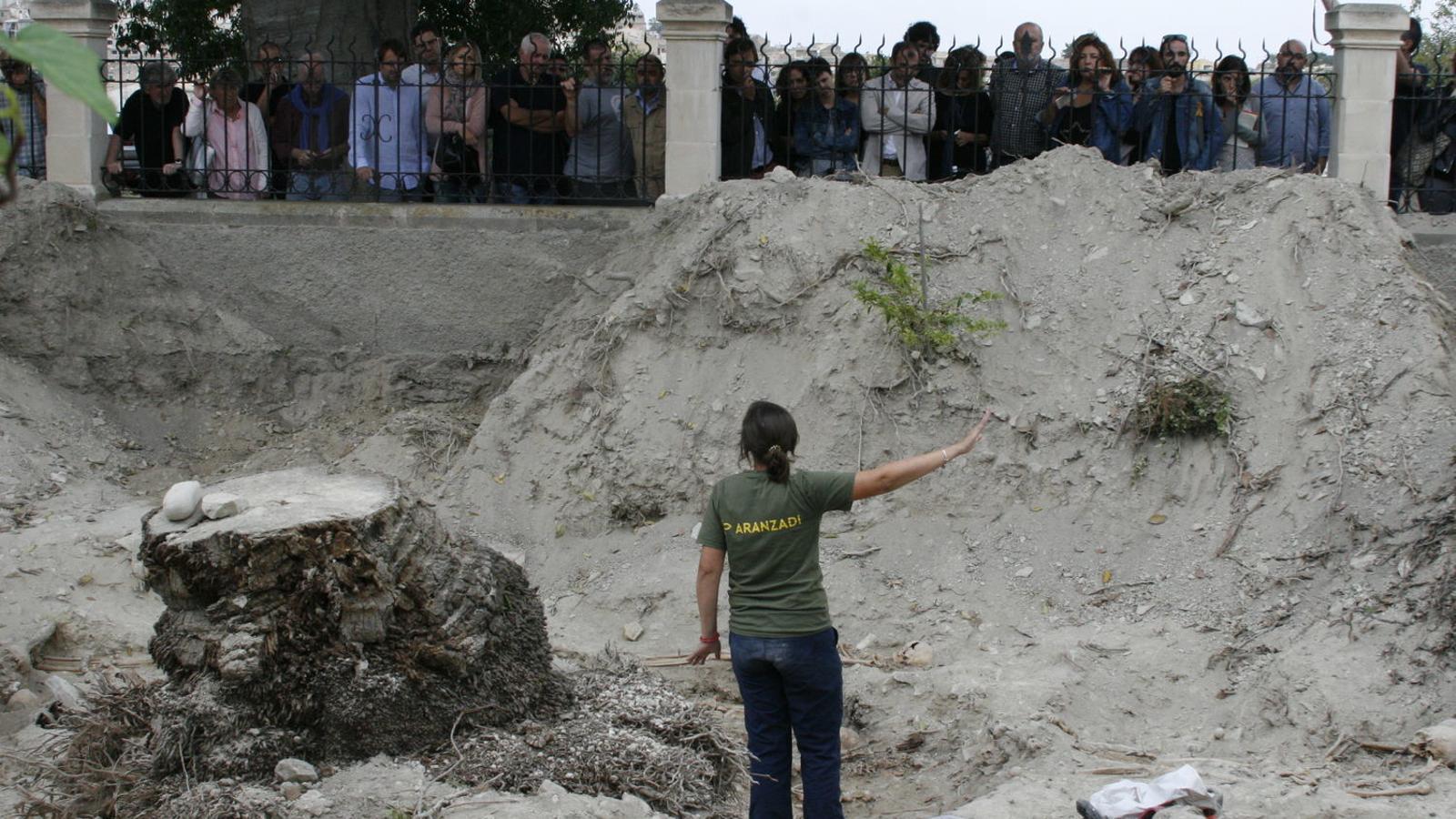 La directora del projecte d'excavació a Montuïri, Francisca Cardona, explicant als polítics la feina feta fins ara.