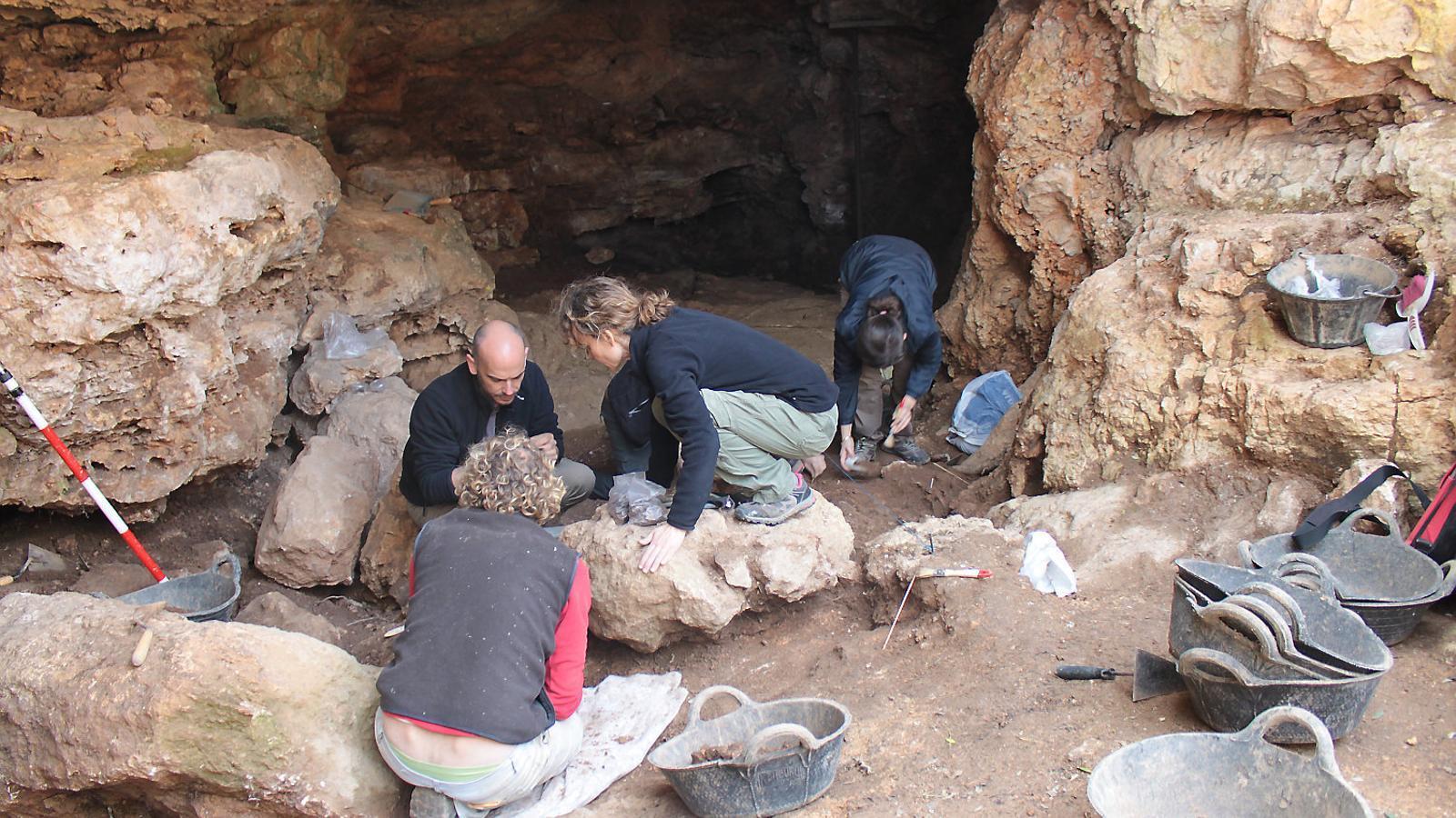 """L'equip d'arqueologia ha topat amb troballes """"sorprenents"""" a la cova, com quilos de cereal i mandíbules d'animal."""