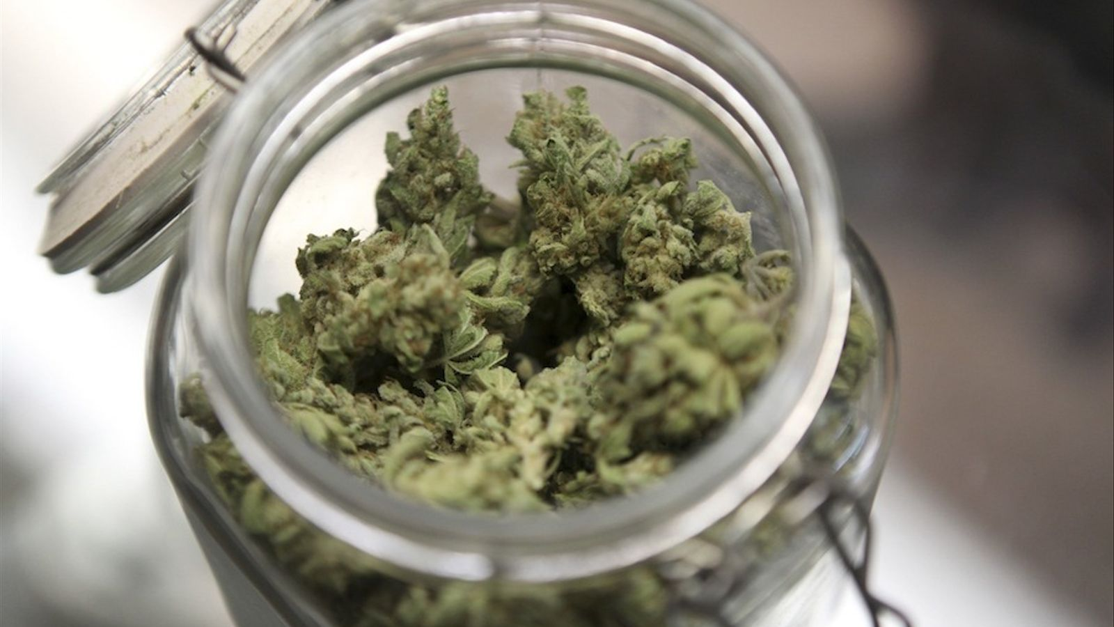 Cabdells de marihuana en una imatge d'arxiu.