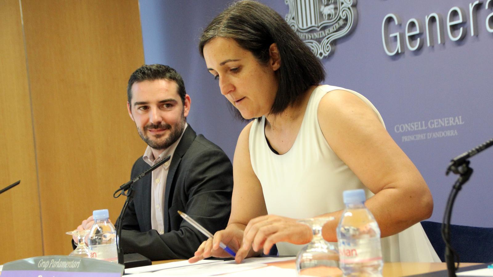 Els consellers generals Marc Ballestà i Sofia Garrallà presenten les modificacions a la Llei de partits polítics / C.G.