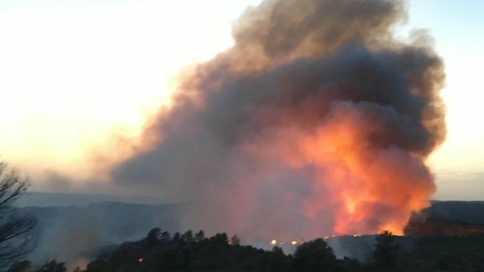 L'Ebre, víctima altre cop dels incendis forestals