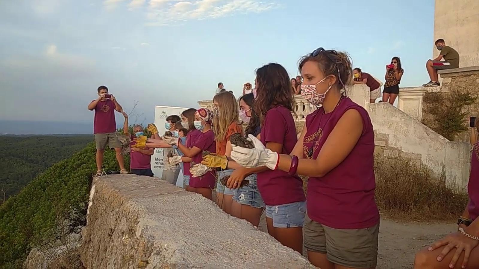 Alliberen vuit polls de mussol a Menorca